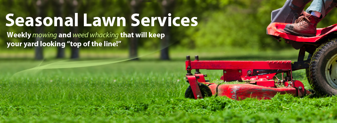 Weekly Mowing and weed whacking that will keep your yard looking top of the line!